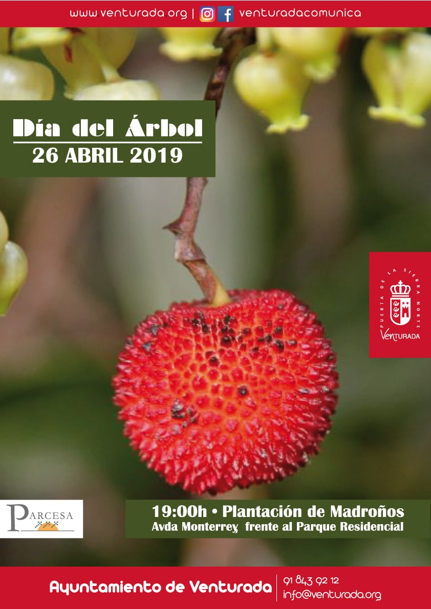 Cartel Dia del Arbol